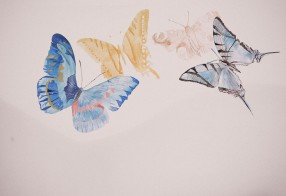 Landscape - body and butterflies